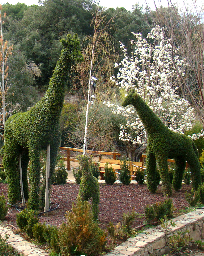 El Bosque Encantado, un jardín idílico para tu Luna de Miel-