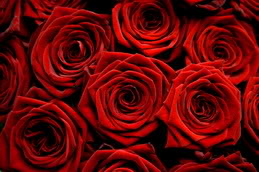 Ideas originales para bodas en San Valentín