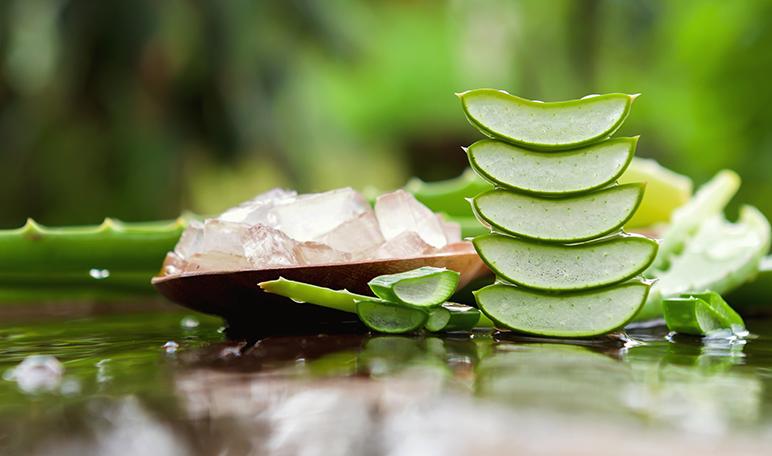 6 remedios caseros para bajar de peso - ¡Siéntete Guapa!