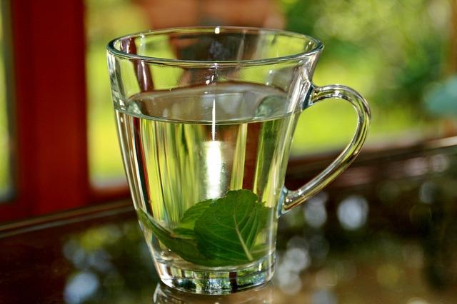 5 remedios caseros para bajar de peso
