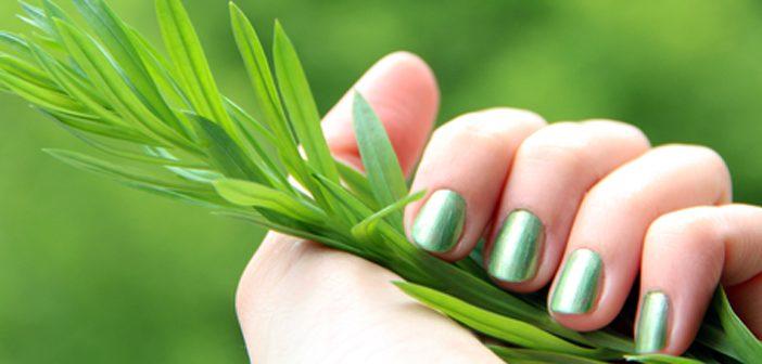 Cómo endurecer las uñas con cebolla - ¡Siéntete Guapa!