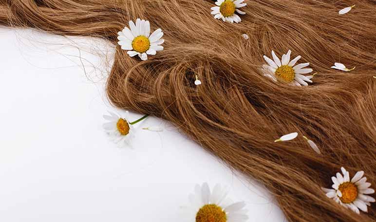 Manzanilla para el cabello castaño - Siéntete Guapa
